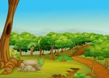Mooie bosweg stock illustratie