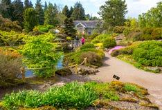 Mooie, botanische tuin in de Lente stock afbeeldingen
