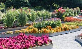 Mooie botanische tuin met vele bloemen royalty-vrije stock fotografie