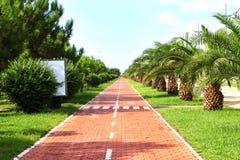 Mooie boulevardweg in Batumi Stock Foto's