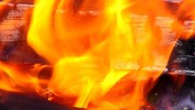 Mooie brand als achtergrond met logboeken houten open haarden stock videobeelden