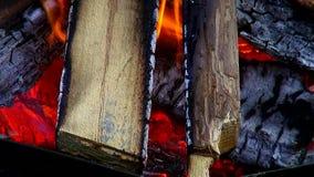 Mooie brand als achtergrond met logboeken houten open haarden stock video