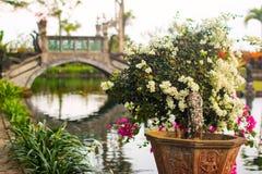 Mooie brug in koninklijk waterpaleis Tirta Gangga in Karangasem, Bali royalty-vrije stock fotografie