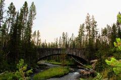 Mooie brug van het Yellowstone de Nationale Park met rotsen en mos en bossen schitterende kleuren royalty-vrije stock fotografie