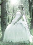 Mooie bruid, bloemtiara op haar hoofd, die zich op de zwart-wit boom baseren, Royalty-vrije Stock Foto's