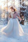 Mooie bruid in de winterbos Stock Afbeeldingen