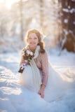 Mooie bruid in de winterbos Royalty-vrije Stock Afbeelding