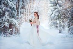 Mooie bruid in de winterbos Royalty-vrije Stock Foto's