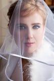 Mooie bruid in een sluier royalty-vrije stock foto's
