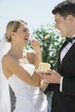 Mooie Bruid het Voeden Huwelijkscake aan Bruidegom Stock Fotografie
