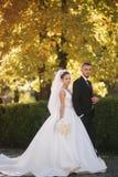Mooie bruid met haar echtgenoot in het park Zij lopen dichtbij de gele boom Mooie make-up royalty-vrije stock foto