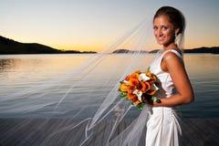 Mooie bruid met sluier die bij zonsondergang wordt uitgebreid Stock Foto's