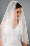 Mooie bruid onder sluier in studio Stock Fotografie
