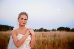 Mooie bruid op een gebied met gras Stock Afbeeldingen