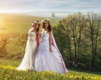2 mooie bruid in in openlucht - idyllisch Royalty-vrije Stock Fotografie