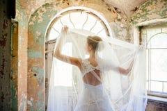 Mooie Bruiden achter royalty-vrije stock foto's