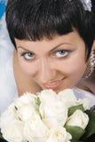 Mooie Bruids Portretten. Royalty-vrije Stock Afbeelding
