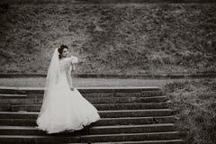 Mooie bruidtribunes op de treden Royalty-vrije Stock Afbeeldingen