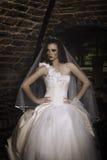 Mooie bruidzitting door venster in wijnkelder Stock Afbeeldingen