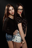 Mooie brunettes in de studio Stock Afbeelding