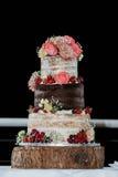 Mooie cake Royalty-vrije Stock Foto