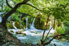 Mooie cascades bij het Nationale Park Kroatië van Plitvice Stock Foto's