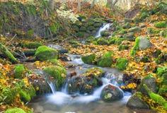 Mooie cascadewaterval in de herfstbos Stock Afbeelding