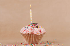 Mooie cupcake Royalty-vrije Stock Foto
