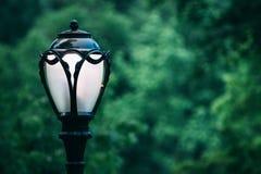 Mooie dag in Central Park, New York Royalty-vrije Stock Afbeeldingen