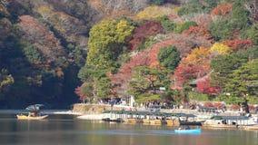 Mooie dalingskleur en Katsura River stock videobeelden