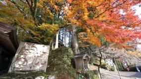 Mooie dalingskleur van Enryaku -enryaku-ji stock videobeelden