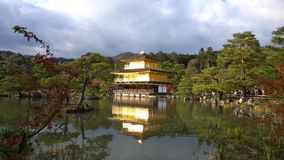 Mooie dalingskleur van Kinkaku -kinkaku-ji stock video