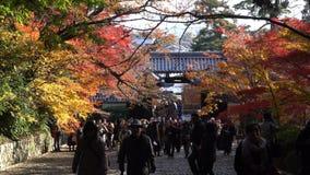 Mooie dalingskleur van Komyo -komyo-ji stock footage