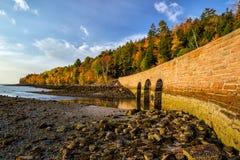 Mooie dalingskleuren van het Nationale Park van Acadia in Maine stock afbeeldingen