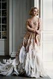 Mooie dame in luxekleding Stock Foto's