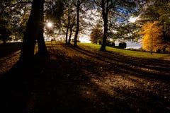Mooie de Herfst` s Lichten en Kleuren royalty-vrije stock foto