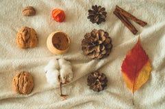 Mooie de herfst seizoengebonden achtergrond De denneappelkatoen van het de herfstassortiment, mandarin, okkernoot, kaneel, blader royalty-vrije stock foto's