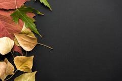 Mooie de herfstachtergrond Royalty-vrije Stock Foto