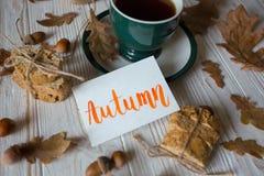 Mooie de herfstachtergrond Stock Foto's