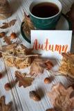 Mooie de herfstachtergrond Royalty-vrije Stock Afbeeldingen