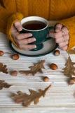 Mooie de herfstachtergrond Royalty-vrije Stock Foto's