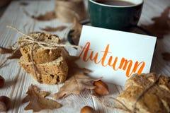 Mooie de herfstachtergrond Stock Afbeelding