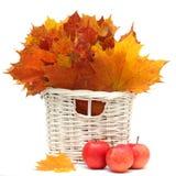 Mooie de herfstbladeren en rode appel Royalty-vrije Stock Foto