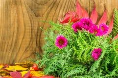 Mooie de herfstsamenstelling op houten achtergrond Royalty-vrije Stock Afbeeldingen