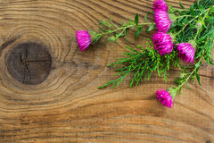 Mooie de herfstsamenstelling op houten achtergrond Stock Foto's