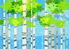 Mooie de Lente bosbomen, groen gebladerte, landschap, struiken, silhouetten van boomstammen, horizon Vectorbeeldverhaalstijl stock illustratie