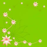 Mooie de lentebloem op groene achtergrond Stock Foto