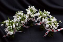 Mooie de lentebloemen voor 8 Maart Stock Afbeelding