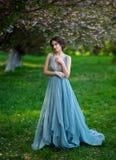Mooie de lentegang in het hout stock afbeelding