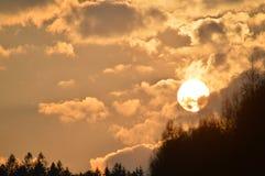 Mooie de lentezonsondergang op bos stock afbeelding